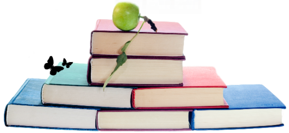 Book Promotion Options